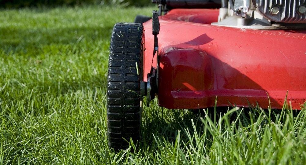 mulczowanie trawnika